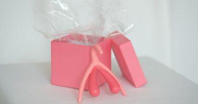 Das Klitoris-Modell für Beratungsgespräche